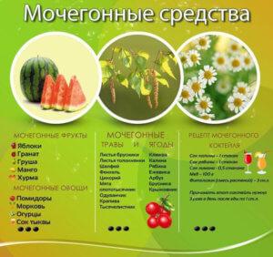 Растительные мочегонные средства